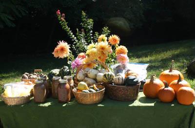 Organic Garden Produce from Divinum Auxilium Academy